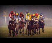 TCG STUDIOS - Horse Racing and Lifestyle portal