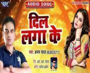 Dil Lagake - Dil Lagake -Ajay Yadav