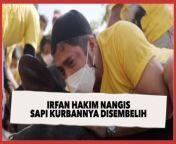 Irfan Hakim Nangis Sapi Kurbannya yang Viral Disembelih<br/><br/><br/><br/>Presenter Irfan Hakim termasuk salah satu artis Tanah Air yang berkurban di Hari Raya Idul Adha tahun ini. Sapi kurban miliknya bernama Grandong sampai viral lantaran ukurannya yang besar.<br/><br/>Dalam vlog terbaru di kanal YouTube deHakims, Irfan Hakim tampak menemani Grandong saat disembelih. Selengkapnya dalam video.<br/><br/>Link terkait<br/>https://www.suara.com/entertainment/2021/07/22/104750/irfan-hakim-nangis-sapi-kurbannya-yang-viral-disembelih<br/><br/><br/>#Kurban #IrfanHakim #IdulAdha<br/><br/><br/>Pengisi Suara/Video Editor: Lintang Larissya/Kamaluddin<br/>===================================<br/>Homepage: https://www.suara.com<br/>Facebook Fan Page: https://www.facebook.com/suaradotcom<br/>Instagram:https://www.instagram.com/suaradotcom/<br/>Twitter:https://twitter.com/suaradotcom