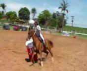 Barrel Racing<br/>Três Tambores no EquitaLyon<br/>Brésil